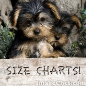 Can I Help You Find Your Size?